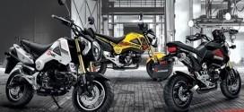 รุ่นและราคาในตลาดรถ Honda MSX ปี 2015