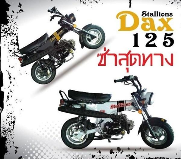 รุ่นและราคา Stallions Dax 2014