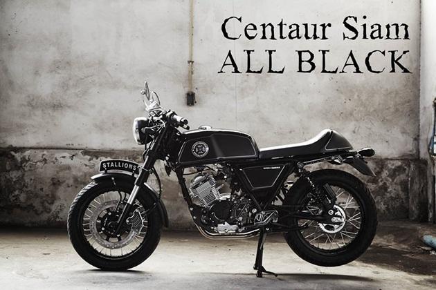 ชุดแต่ง Stallion Centaur Siam