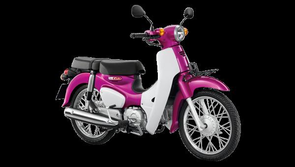 เฉดสีและราคา Honda Super Cub ในปี 2019